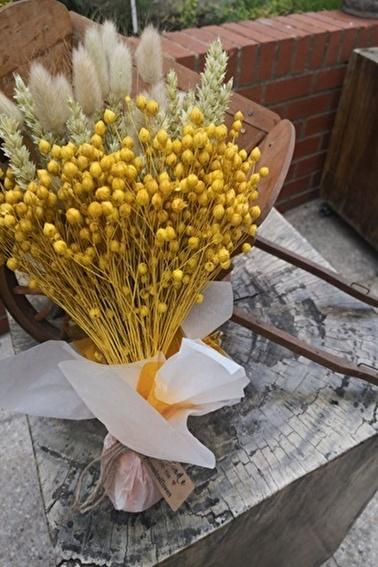 Arma House Doğal Sarı Keten Otu Sarı